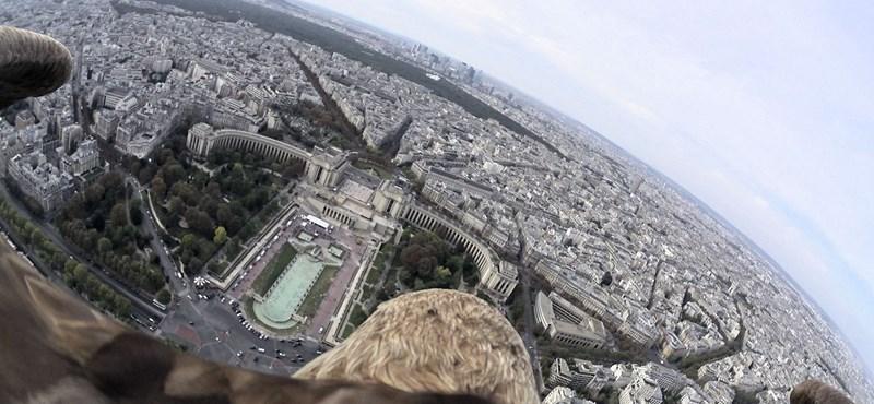 Videó a levegőből: így látja egy sas a várost