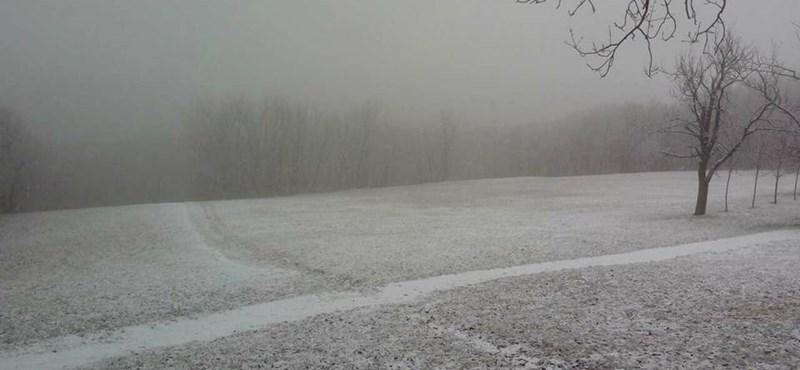 Már a Normafát is elérte a hó – fotók