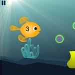 Az Angry Birds után itt a Hungry Fish