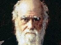 Több mint félmillió dollárért kelt el Darwin A fajok eredete című könyve