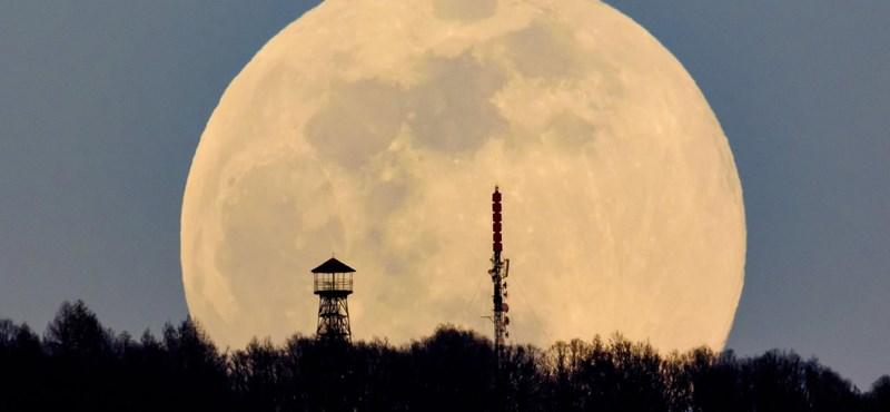 A Holdig vinné Puskást és az egész Aranycsapatot a magyar űrvállalat