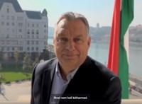Míg sorra viszik tárgyalásra a hajléktalanokat, Orbán egy orrszarvú nevéről szavaztat