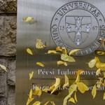 Pécs polgármestere is tiltakozik a PTE átalakítása ellen