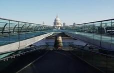 Magyar videós filmezte le, ahogyan London Csipkerózsika-álmát alussza