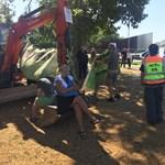 Egy kivétellel eltávolították a faátültetés ellen tiltakozókat a Városligetben – videó