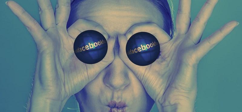 Egyre több facebookozó után szaglászik a kormány, idén már 532 fiókról kértek ki adatokat