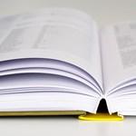 Felsőoktatási és középiskolai felvételi, őszi szünet, ösztöndíjak: a következő hetek fontos dátumai