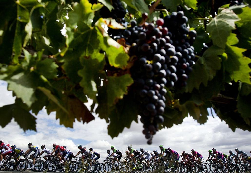 13.09.11. - Burgos, Spanyolország: a Vuelta kerékpárverseny 17. napján Calahorra és Burgos között - 189km szakasz - évképei, az év sportképei