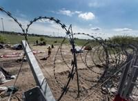 Konyhán, varrodákban, mosodákban kaptak munkát a Budapestre érkezett menekültek