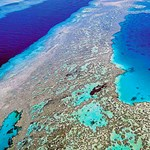 Kiszámolták, mennyit ér a Nagy-korallzátony