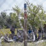 Csaknem négyszáz határsértőt fogtak el a hétvégén
