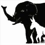 Megtalálja az összes állatot ezen a képrejtvényen?