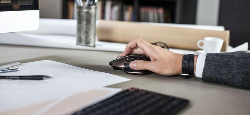 Cégkapu: Kötelező regisztrálni a honlapra, amin még semmi nincs