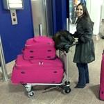 Hogyan lopnak bőröndünkből a repülőtéren? - videó
