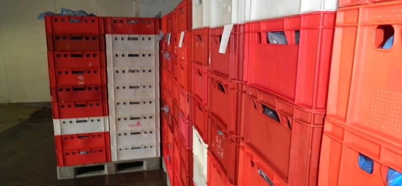 NAV: A helyszínen kifizették készpénzben egy húsipari cég 15 milliós adótartozását