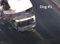 Három sérült, hat ütközés az őrült amerikai autós üldözés mérlege