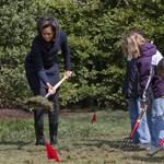 Divat a konyhakert az USA-ban - az elnöki család is együtt kapál