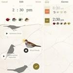 4 ingyenes app, amit minden egyetemistának le kell töltenie