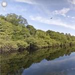 A Google térképére került az Amazonas - nagyfelbontásban