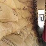 Kiderült, hogy gyarmatosítaná-e a kormány Ghánát