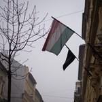 Veronai tragédia: beszámoltatja a Klik az igazgatókat