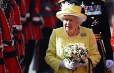 Gin gyártásába fogott II. Erzsébet királynő