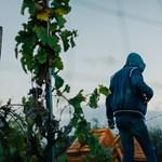 Először perlik környezetvédők az olasz kormányt mulasztás miatt