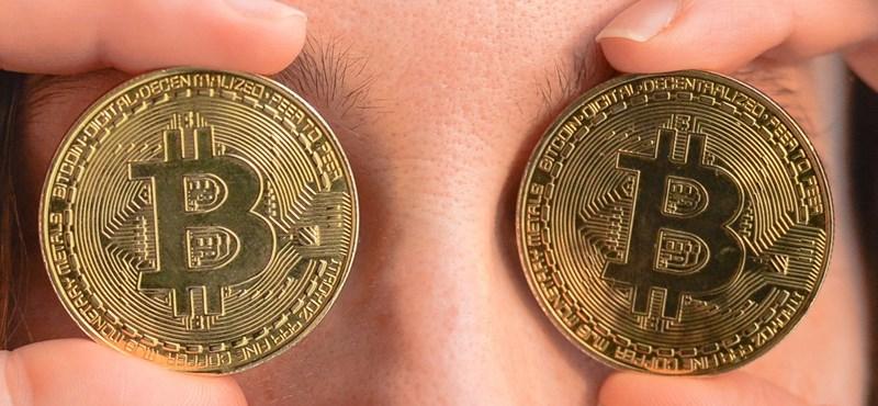 173 millió forintnyi bitcoint bukott egy ember, mert azt hitte, Elon Musk megajándékozza