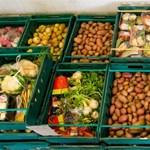 Újra meghirdeti interaktív adománygyűjtő kampányát az Élelmiszerbank