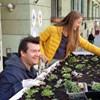 Növények lepték el egy ferencvárosi buszmegálló tetejét