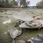 Fotó: így haldoklik egy debreceni tó