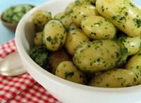Ha így haladunk, eljön majd az idő, amikor egyáltalán nem terem krumpli Magyarországon