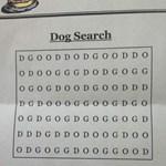 Megtalálja a három betűs szót?