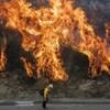 Már három halálos áldozata van a Kaliforniában pusztító tűzvésznek