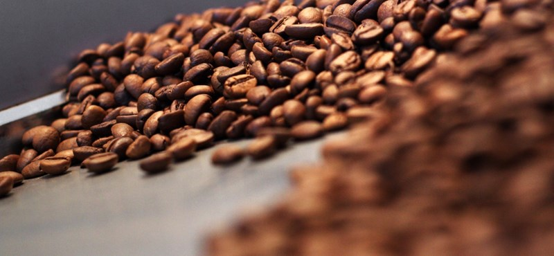 A túl sok koffeintől halt meg egy amerikai tini
