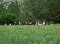 A vadászok miatt egy hónapig csak munkaidőben lehet kirándulni a Velencei-hegységben