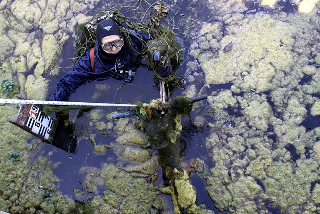 Egy búvár kerékpárt emel ki a vízből. A búvárok megtisztítják a pétfürdői Kapossi-víztározót az elszaporodott vízinövényektől  hínártól és szeméttől. A tározó a Péti Nitrogénművek ipari vízellátását biztosítja, de a hínárok és a vízinövények annyira benőtték, hogy már akadályozzák a természetes vízáramlást. Mivel ezeket géppel nem lehet irtani, ezért a búvároknak kézzel kell eltávolítaniuk a többtonnányi növényzetet. A növények szárát víz alatt sarlóval vágják el, majd a hulladékot víz felett kitolják a partra. A növényirtás mellett átvizsgálják a tározó zsiliprendszerét, valamint kiszedik a tóba dobált különféle tárgyakat is.