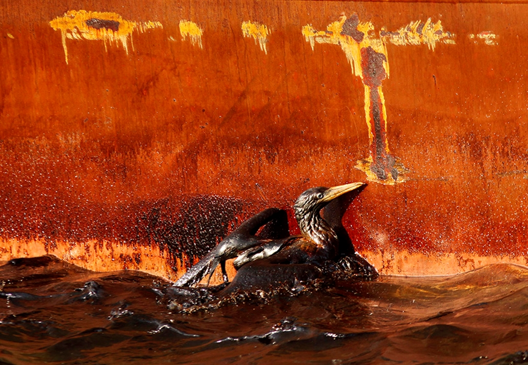 olajszennyezés mexikói-öböl nagyítás
