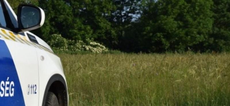 Egy másik kislányt is találtak a feltételezett sólyi gyilkosnál