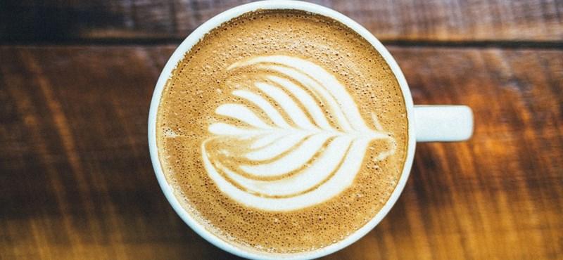 Ezek Budapest legjobb kávézói: itt töltődhettek fel energiával két vizsga között