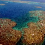 Siralmas állapotban van a Nagy-korallzátony a környezetszennyező ember miatt