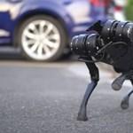 Kínának is van már saját robotkutyája, háziállatnak szánják