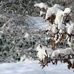 Karácsony másnapján megjöhet a havazás