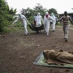 Ebola: lélektani határt lépett át az áldozatok száma