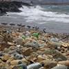 A halételekkel ehetjük meg a tengerbe került műanyag hulladékot