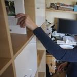 Nulla befektetéssel unikális bizniszt indított egy magyar pr-szakember