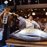 Kilónként közel kétmillió forintért kelt el egy tonhal Japánban