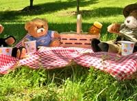 Ma van a Mackóval Piknikezés Napja