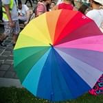 Alkotmánybíróság: Alapvető jog a transznemű emberek nemének jogi elismerése