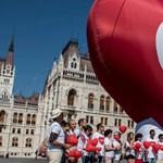 Az Alkotmánybíróság egyelőre nem dönt sem a CEU-, sem a civiltörvényről